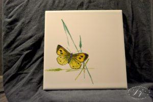 Dlaždice Motýl V Trávě