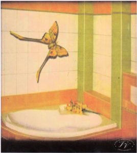 Návrh Koupelny Dlaždice Motýl ž.