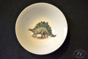 Talíř Dinosaurus 1.